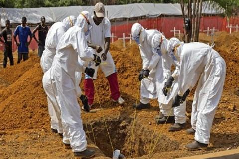 OMS-declara-emergencia-mundial-por-el-brote-de-ebola-