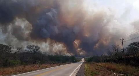 Selva-de-Brasil-arde,-sufre-la-peor-oleada-de-incendios