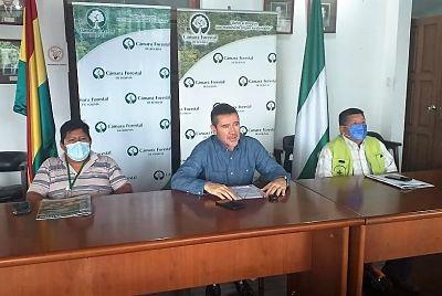 La-Camara-Forestal-pide-al-gobierno-subir-aranceles-para-la-importacion-de-madera