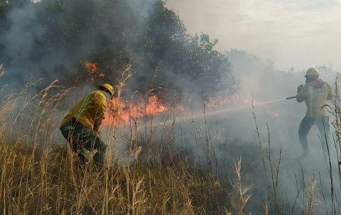 Alcaldia-conforma-un-comite-contra-incendios-y-atencion-de-desastres