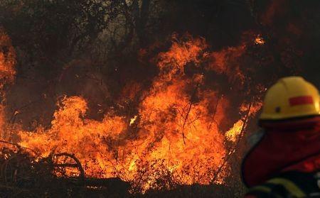 Incendios-forestales-se-cobra-la-vida-de-un-hombre-en-Santa-Cruz